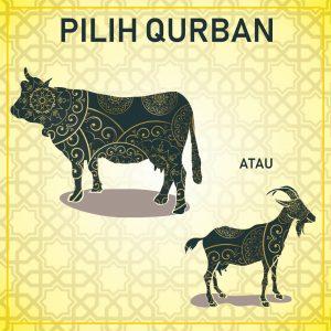 Qurban Sapi Atau Kambing Sababproperty Com